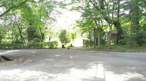 Imag5652